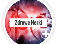 Nerki logo