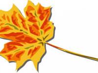 listek jesieny