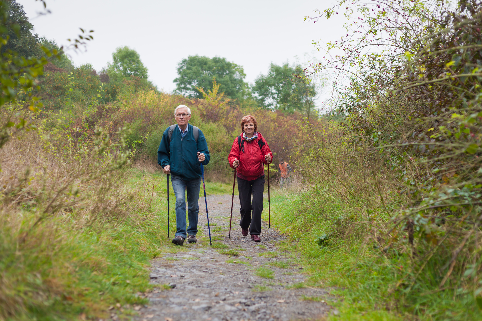 Senior couple Nordic walking on the trail in nature