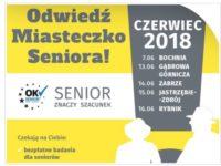 Bezpieczny Senior