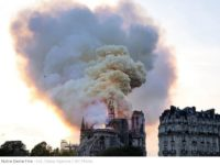 Katedra Notre Dame ugaszona. Na szczęście wnętrze świątyni jest w dobrym stanie