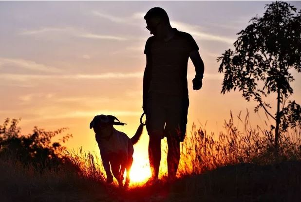 Spacer to skuteczniejszy trening niż ci się wydaje!