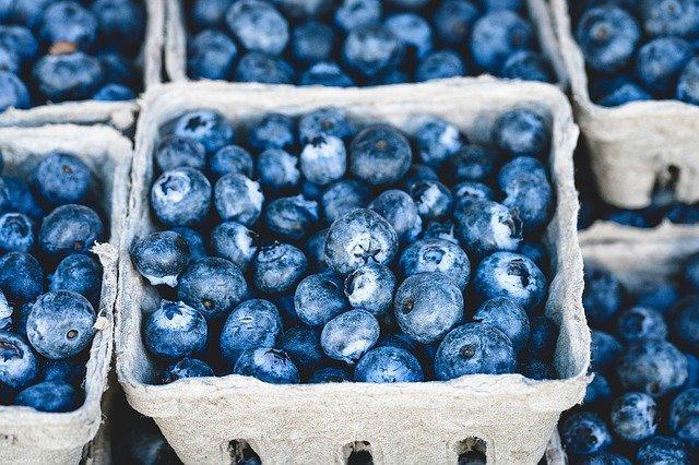 blueberries-1326154_640